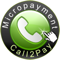 Micropayment payment service Provider